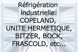 Régulation DIXELL Compresseurs : COPELAND, UNITE HERMETIQUE, BITZER, BOCK, FRASCOLD, EMBRACO, DORIN Evaporateurs : ALPHA LAVAL, SEARLE, ROLLER, FRIGA-BOHN , KÜBA, GLACIAL